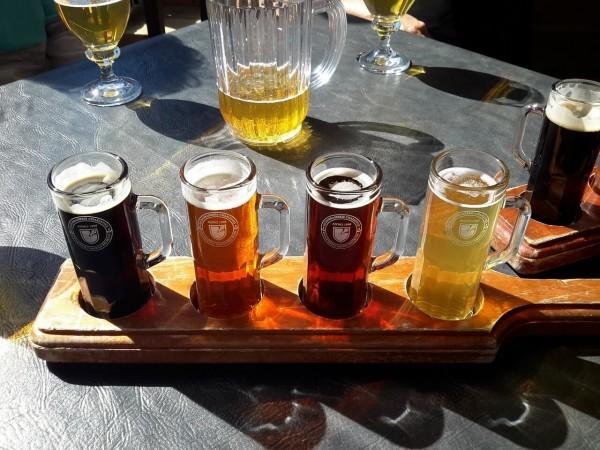 bierverkostung-klein
