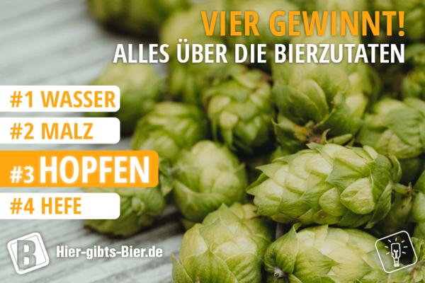 hopfen-im-bier