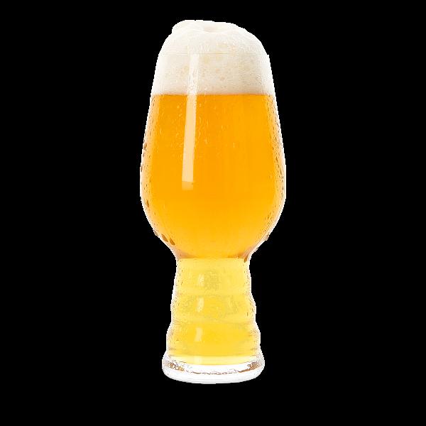 Bier Verkostungsglas